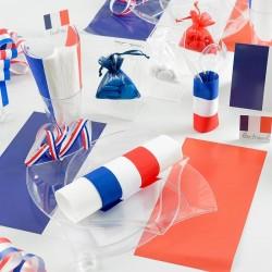 6 Stk dækkeservietter Fransk flag