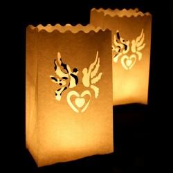 Kinesisk lyspose 2 duer til bryllup