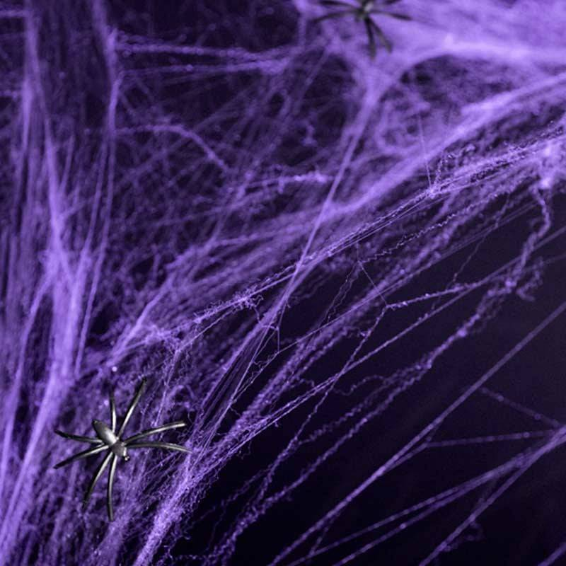 Lilla spindelvæv med 2 edderkopper