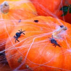Halloween pynt hvid spindelvæv
