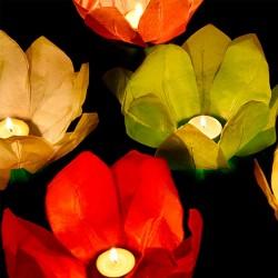Festpynt flydende blomster lanterner.