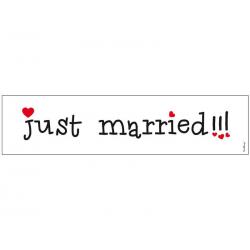 Nr plade skilt just married !!