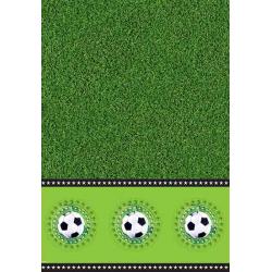 Plastik borddug fodbold