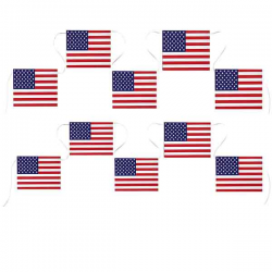 USA Flag guirlande. 5 m. 12 flag