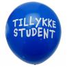 10 Blå Balloner Tillykke Student