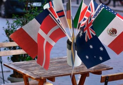 Køb danske og internationale flag | Dannebrogsflag til pynt og fest